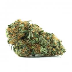 Buy Hybrid Strain Weed